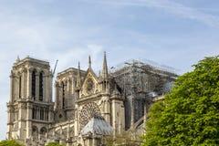 Собор Нотр-Дам de Парижа после огня 15-ого апреля 2019 стоковое фото