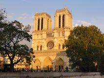 Собор Нотр-Дам de Париж - Франция Стоковые Изображения