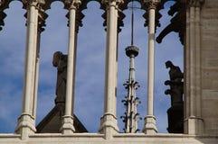 Собор Нотр-Дам de Париж - французское architecure - Париж, Франция Стоковые Изображения