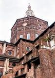 Собор Павии, Италии Стоковое фото RF