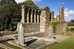собор средневековый папоротники co Wexford Ирландия стоковая фотография