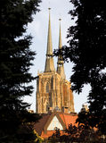 собор Стоковое Фото