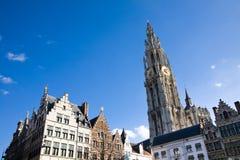 собор antwerp Бельгии стоковое фото rf
