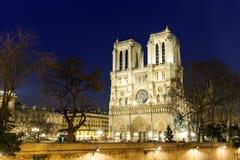 собор dame de notre paris Стоковые Фотографии RF