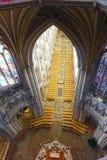 собор ely Стоковое фото RF