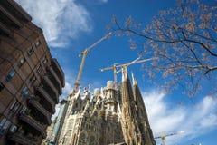 Собор familia Sagrada смотря вверх Стоковое фото RF
