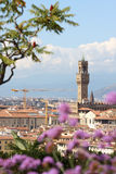 собор florence Италия Тоскана Стоковые Изображения RF