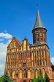 Собор Koenigsberg - готический XIV век виска. Калининград Стоковое Изображение RF