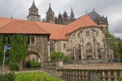 Собор Magdeburg Стоковое Изображение