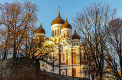 собор nevsky tallinn Александра Стоковая Фотография RF