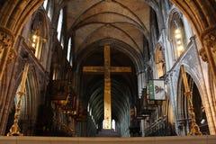 Собор ` s St. Patrick, Дублин, Ирландия Стоковое Изображение RF