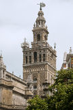 собор sevilla Испания Стоковое Изображение RF