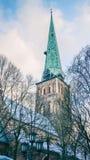 Собор St Джейкоба католический Риги, Латвии Ретро введенная в моду фотография стоковые изображения rf