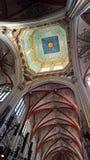 Собор St. John s, s-Hertogenbosch, Нидерланды Стоковое Изображение
