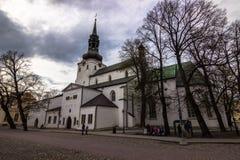 Собор St Mary в Таллине, Эстонии стоковая фотография
