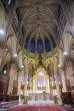 Собор St. Patrick стоковые изображения rf
