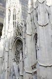 Собор St. Patrick Стоковые Фотографии RF