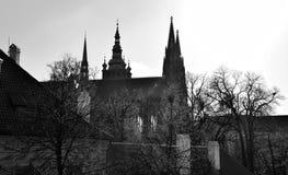 Собор St Vitus в Праге после дождя в черно-белом Стоковая Фотография
