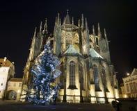 Собор St Vitus ночи нижнего взгляда стоковые изображения rf