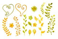 Собрание акварелей цветков и листьев Для дизайна крышки, упаковывающ, предпосылки иллюстрация вектора