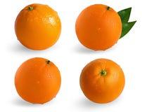 Собрание апельсинов изолированных на белой предпосылке Влажный апельсин изолированный на белой предпосылке Стоковые Изображения RF