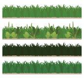 Собрание безшовной зеленой травы иллюстрация штока