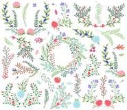Собрание вектора винтажной флористического стиля нарисованное рукой Стоковое Изображение RF