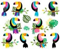 Собрание вектора яркого и красочного Toucans и тропических листьев иллюстрация штока