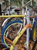 Собрание велосипеда во дворе перед входом стоковое изображение rf