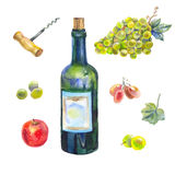 Собрание вина акварели Стоковая Фотография