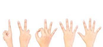собрание вручает символ номера Стоковые Изображения