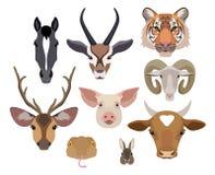 Собрание голов животных вектора Плоский, элементы дизайна стиля шаржа Стоковые Фото
