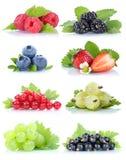 Собрание голубик клубник виноградин плодоовощей ягод красных Стоковое Изображение