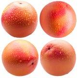 Собрание грейпфрута с падениями воды изолированного на белом ба Стоковые Фото