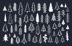 Собрание деревьев хвои ели сосны doodle Стоковая Фотография