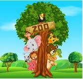 Собрание животных зоопарка с гидом Стоковое Фото