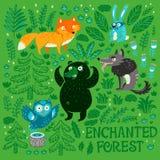 Собрание животных и растений леса мультфильма руки вычерченных стоковая фотография