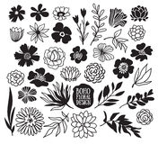 Собрание заводов и цветков Boho черное декоративное Стоковое Изображение RF