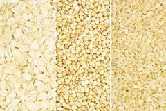 Собрание зерна стоковые изображения rf