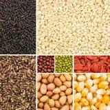 Собрание зерна стоковые фотографии rf