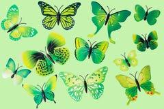 Собрание зеленых бабочек фантазии Стоковое Фото