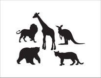 Собрание диких животных иллюстрация штока