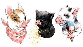 Собрание иллюстрации отметки мини свиней с мороженым, бенгальским огнем, шалью иллюстрация штока