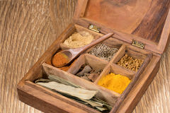 Собрание индийских специй в деревянной коробке Стоковая Фотография RF