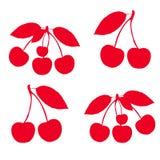 Собрание красных вишен на хворостинах, силуэт на белой предпосылке иллюстрация вектора