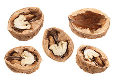 Собрание крупного плана плодоовощ грецкого ореха Стоковое Изображение RF