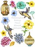Собрание листьев иллюстрации акварели ботаническое установило сада диких и цветения и абстрактных элементов листвы иллюстрация вектора