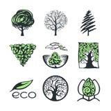 Собрание логотипа дерева Стоковые Изображения RF