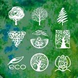 Собрание логотипа дерева Стоковые Фотографии RF