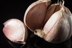 Собрание макроса, французский розовый конец головы чеснока вверх Стоковое Изображение RF
